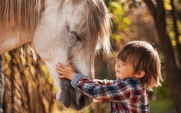 лошадь, природа, ребенок, мальчик, животное, конь, agnieszka gulczynska