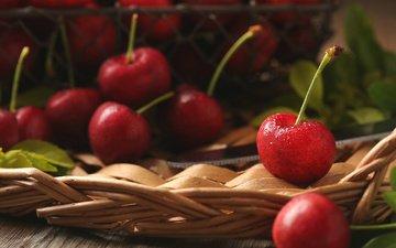листья, макро, черешня, ягоды, вишня, плетенка, л