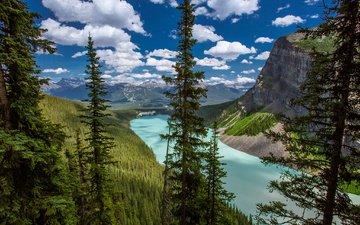 небо, облака, деревья, озеро, горы, природа, пейзаж, ели, леса, канада, альберта, национальный парк