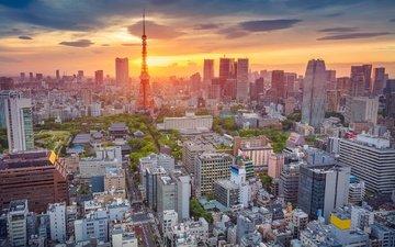 panorama, japan, tower, home, tokyo