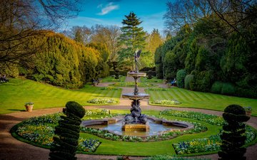 trees, park, the bushes, london, fountain, england, lawn