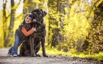 природа, улыбка, собака, дети, девочка, волосы, лицо, бульмастиф, calis pictures
