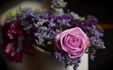 цветы, роза, букет, размытие, композиция, фокус
