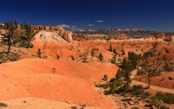 rocks, desert, usa, utah, bryce canyon national park