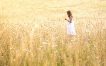 light, flowers, dress, field, summer, children, girl, hair, face