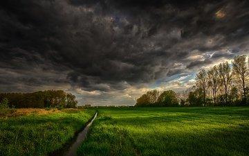 небо, трава, деревья, тучи, ручей, поле, канал