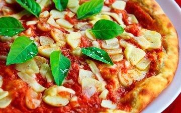 овощи, соус, пицца, чеснок, базилик