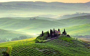 hills, italy, hill, vineyard, tuscany