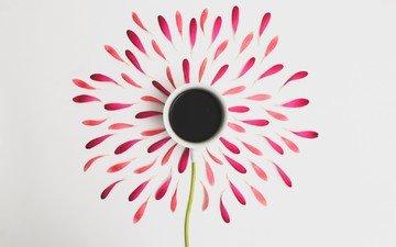 цветок, лепестки, кофе, белый фон, чашка, стебель