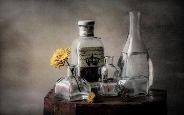 цветок, стекло, посуда, бутылка, алкоголь, натюрморт, графин, самогон