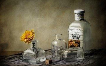 цветок, стекло, посуда, бутылка, алкоголь, натюрморт, пробка, самогон