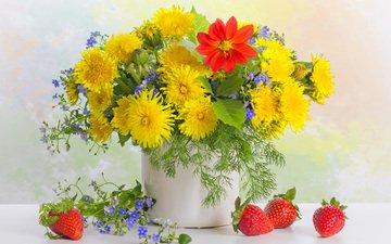 цветы, клубника, ягоды, одуванчики, незабудки, натюрморт, георгин