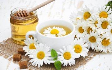 цветы, ромашки, чашка, чай, мед, сахар, травяной чай