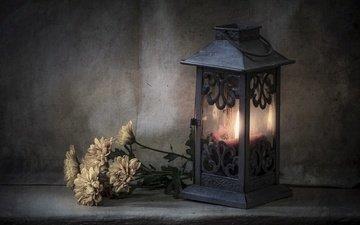 цветы, стиль, фонарь, свеча, хризантемы