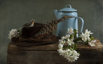 flowers, branches, board, bird, kettle, apple, hat, pen