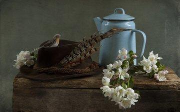 цветы, ветки, доски, птичка, чайник, яблоня, шляпа, перо