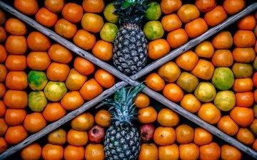 фрукты, мандарины, ананас, цитрусы, ящик, гранаты, ананасы, витрина
