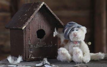toy, feathers, birdhouse, bear, teddy bear