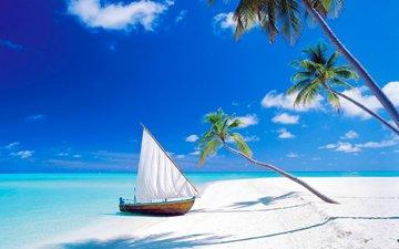море, песок, пляж, лодка, пальмы, остров, тропики, мальдивы