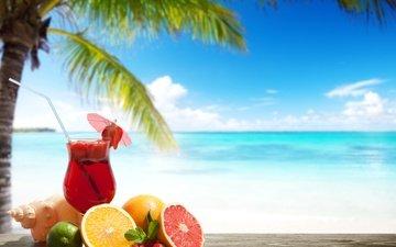 напиток, фрукты, клубника, пальма, апельсин, лайм, коктейль, зонтик, ракушка, тропики, трубочка, грейпфрут