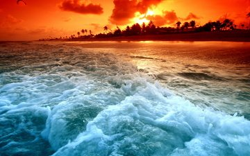 небо, пляж, красиво, тропики, кайтсёрфинг