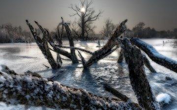 деревья, озеро, зима, лёд, холод