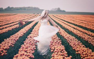 цветы, природа, девушка, поле, тюльпаны, белое платье