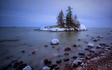 деревья, природа, камни, берег, зима, море, остров