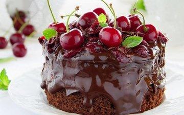 мята, ягоды, вишня, шоколад, сладкое, торт, десерт