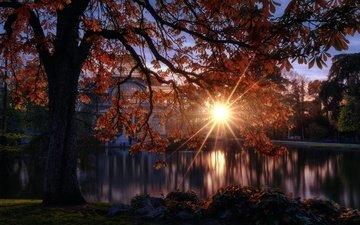 солнце, отражение, осень, дворец, испания