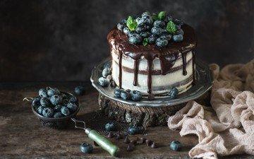 ягоды, черника, шоколад, сладкое, торт, десерт