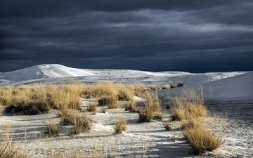 небо, трава, природа, пустыня