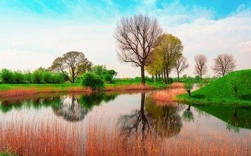 небо, трава, облака, деревья, природа, отражение, англия, весна, зеленая, у