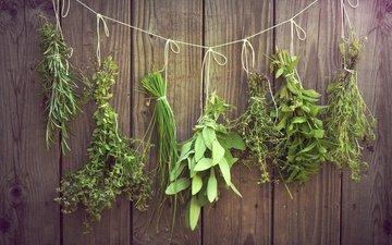 зелень, травы, пряности, приправы, нитка, висят