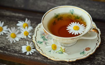 flowers, drink, chamomile, cup, tea