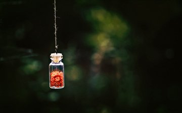 blur, hearts, jar, bottle, thread