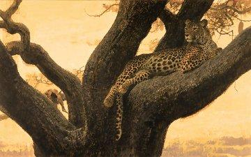 дерево, кошка, 3д