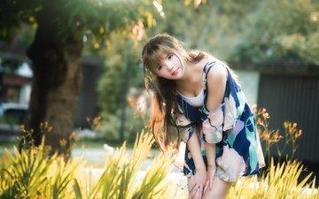 девушка, настроение, взгляд, волосы, азиатка