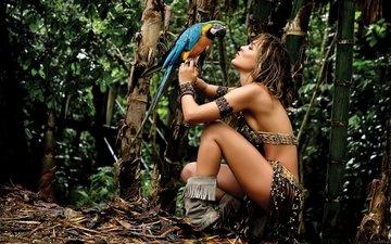 девушка, джунгли, попугай