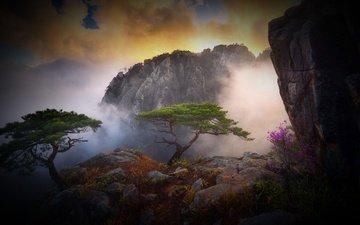 небо, облака, деревья, горы, камни, туман