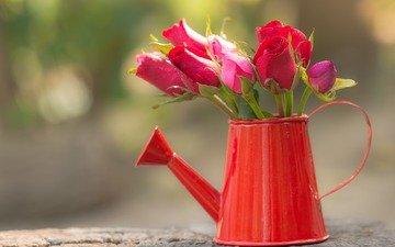 цветы, розы, букет, боке, лейка