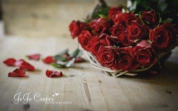 цветы, розы, лепестки, букет