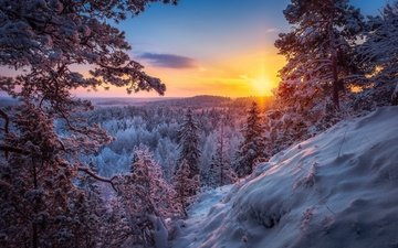 снег, природа, лес, закат, зима, пейзаж, солнечные лучи