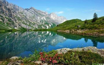 озеро, горы, природа, отражение, пейзаж, цветы. лето