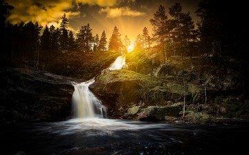 деревья, река, солнце, природа, лес, водопад, д