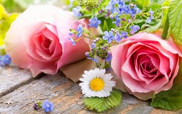 цветы, бутоны, розы, лепестки, ромашка, незабудки