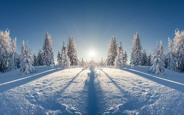 небо, солнце, снег, природа, лес, зима, лучи, пейзаж, мороз, елки, ели, сугробы, тени