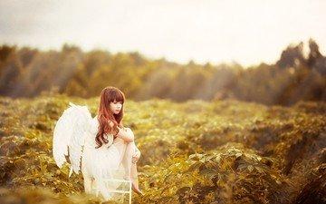 стиль, девушка, настроение, взгляд, крылья, ангел, азиатка, шатенка