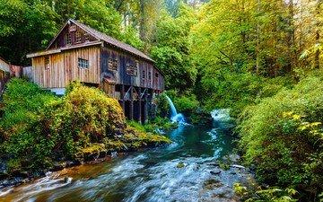 деревья, река, природа, лес, водяная мельница, мельница.