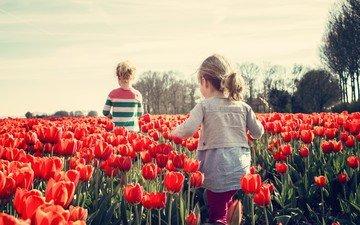 цветы, настроение, дети, весна, тюльпаны, девочки